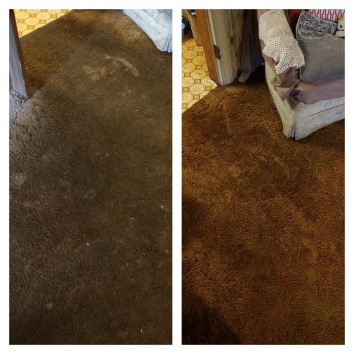 A One Carpet Cleaning Columbia Sc Carpet Vidalondon